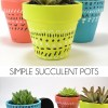 Simple Succulent Pots