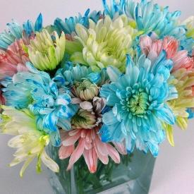 Dyeing Flowers with Food Coloring Tutorial