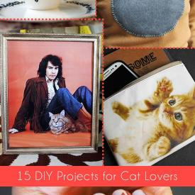 15 DIY Projects for Cat Lovers