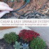 DIY Sprinkler System on the Cheap!