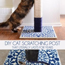 DIY Cat Scratching Post That Literally Lasts for Years!