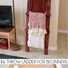 $6 Throw Ladder for Beginners