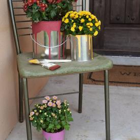 Flowering Paint Cans - Easy Fall Color