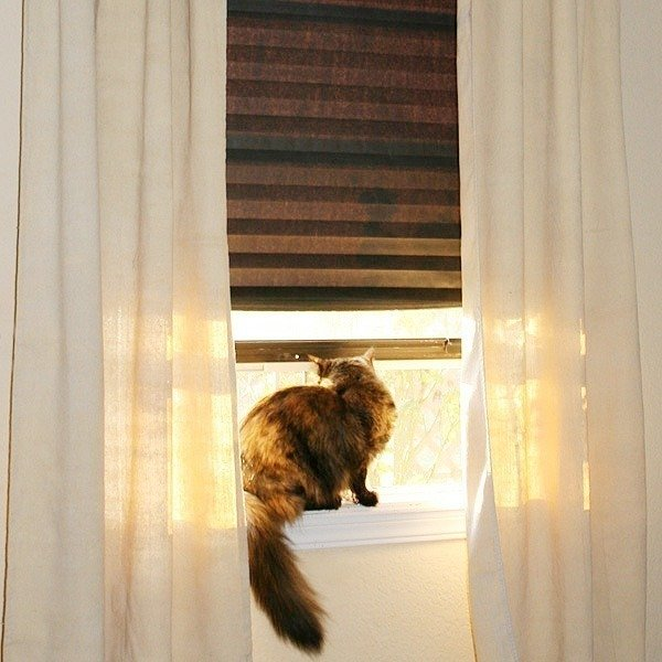 014-no-sew-dropcloth-curtains-dreamalittlebigger