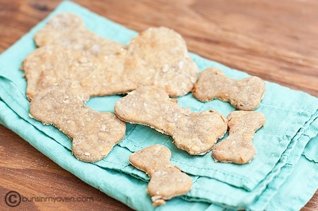 Things to make for your dog at Dream a Little Bigger