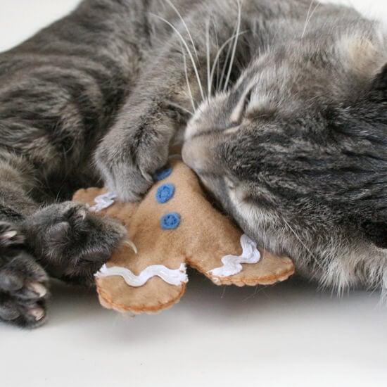 how to make catnip spray for cats