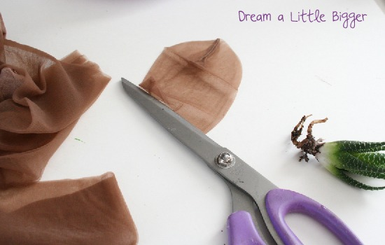 Cheer up your desk and make a bright and cheerful zen garden tutorial at Dream a Little Bigger