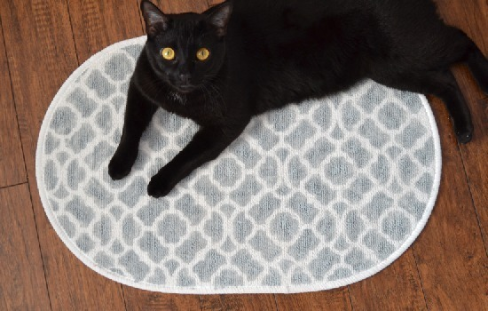 $2 Perfectly Matchy Matchy Bath Mat Tutorial - style on the cheap!