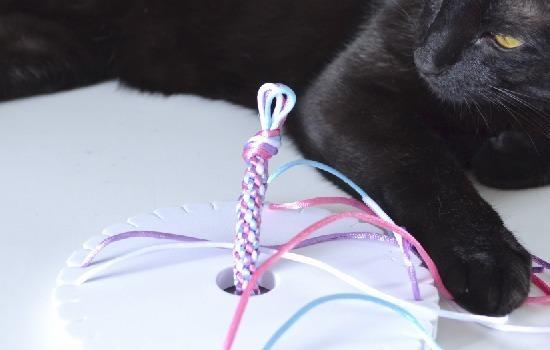 Learn the basic 8 strand Kumihimo braid