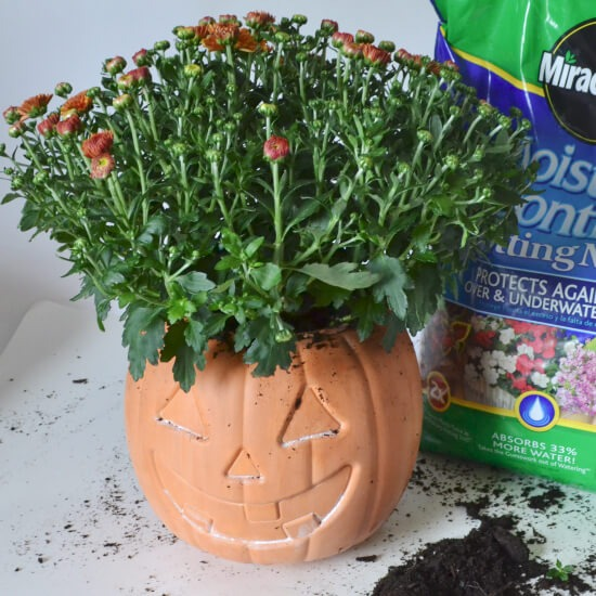 Jack-o'-Lantern Pumpkin Terra Cotta Pot Tutorial