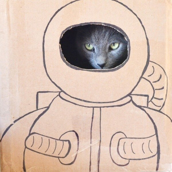 Happy Caturday - Astronaut Cat Portrait