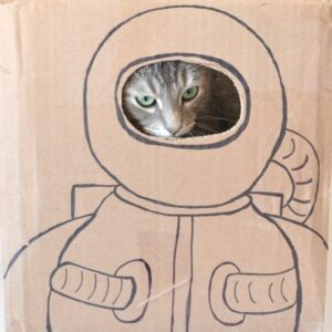 Happy Caturday - Astronaut Cat Portrait