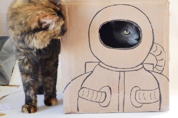 astronaut kitty - photo #31