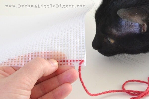 002-stitch-plastic-canvas-dreamalittlebigger