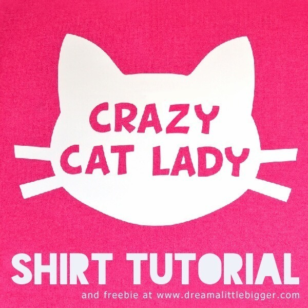 header-crazy-cat-lady-dreamalittlebigger