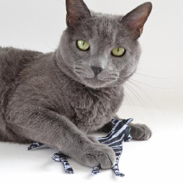 001-safari-catnip-toys-dreamalittlebigger