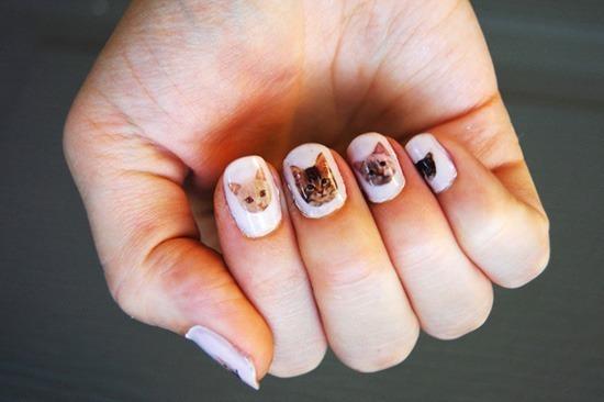 cat-nails-1