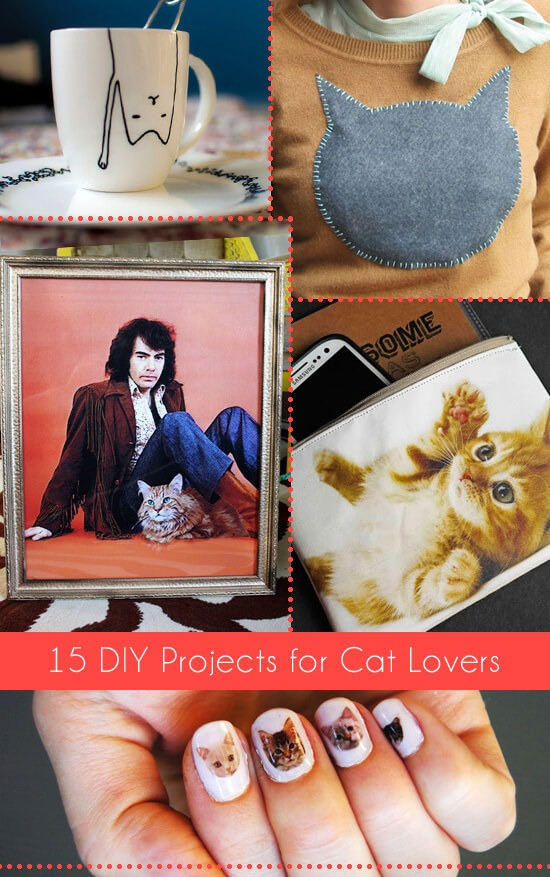 header-16-diy-projects-cat-lovers-dreamalittlebigger