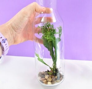 Carefully slide a handful of rocks along the side of the glass to the bottom.