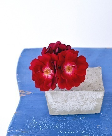 concrete-bloom-vase
