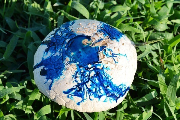 Keep an eye out and entertain the kids on the cheap and tie dye mushrooms! r