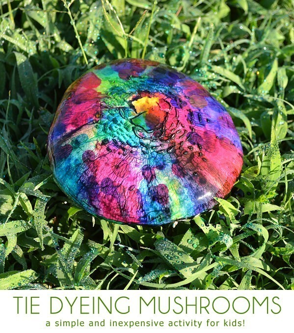 Keep an eye out and entertain the kids on the cheap and tie dye mushrooms!