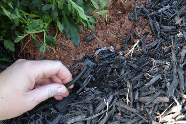 Make this cheap & easy sprinkler system! Plant them and forget them! No dying from lack of water!