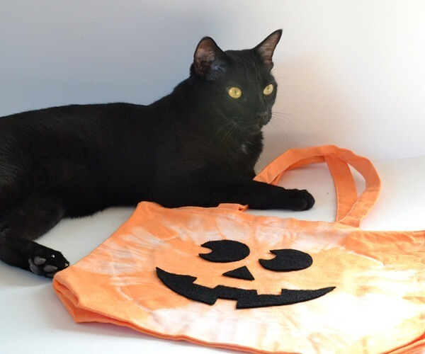 Reuse tote bags for trick or treat bags that easily fold to store and can be used year after year!