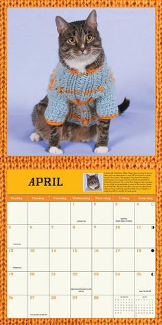 Cats in Sweaters Calendar - Amazon.com, $13.20