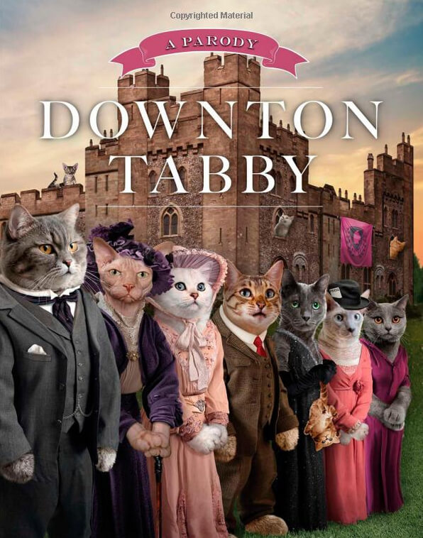 Downton Tabby (book) - Amazon.com, $6.33