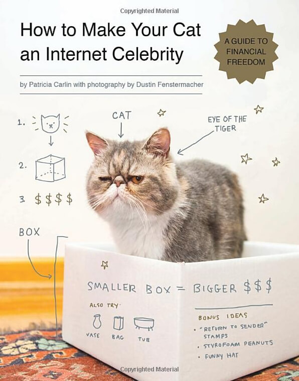 How to Make Your Cat  an Internet Celebrity (book) - Amazon.com, $10.68