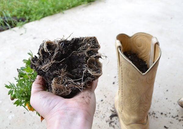 how to make a concrete boot planter