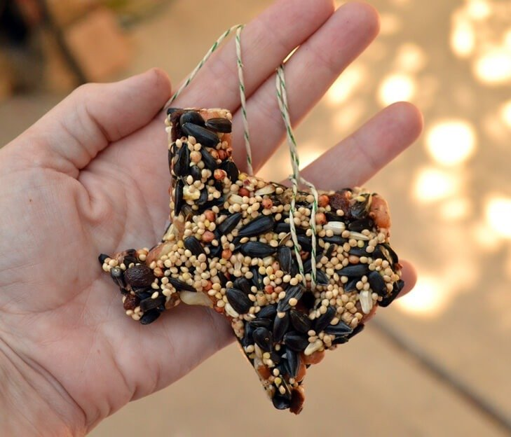 Make bird feeders out of birdseed in just about any shape. It's so easy and these won't fall apart like some recipes!
