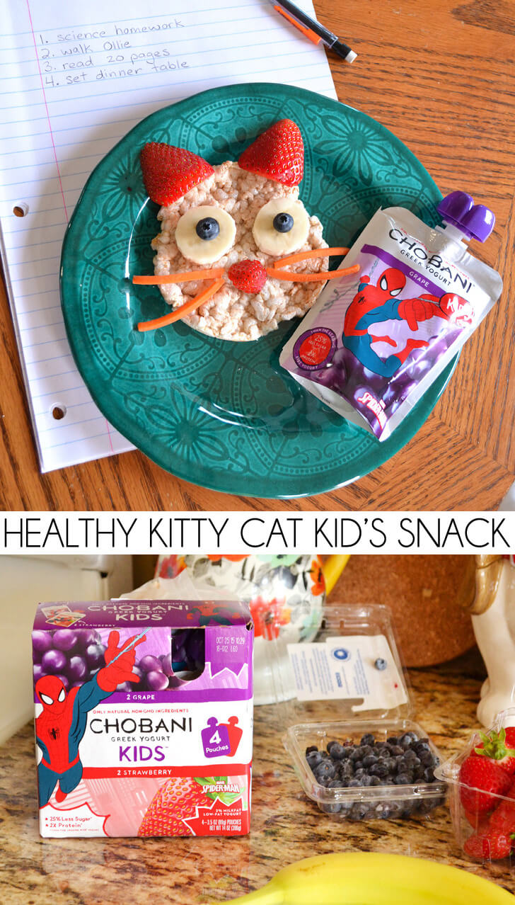 Healthy Kitty Cat And Chobani Kids 174 Snack Dream A Little