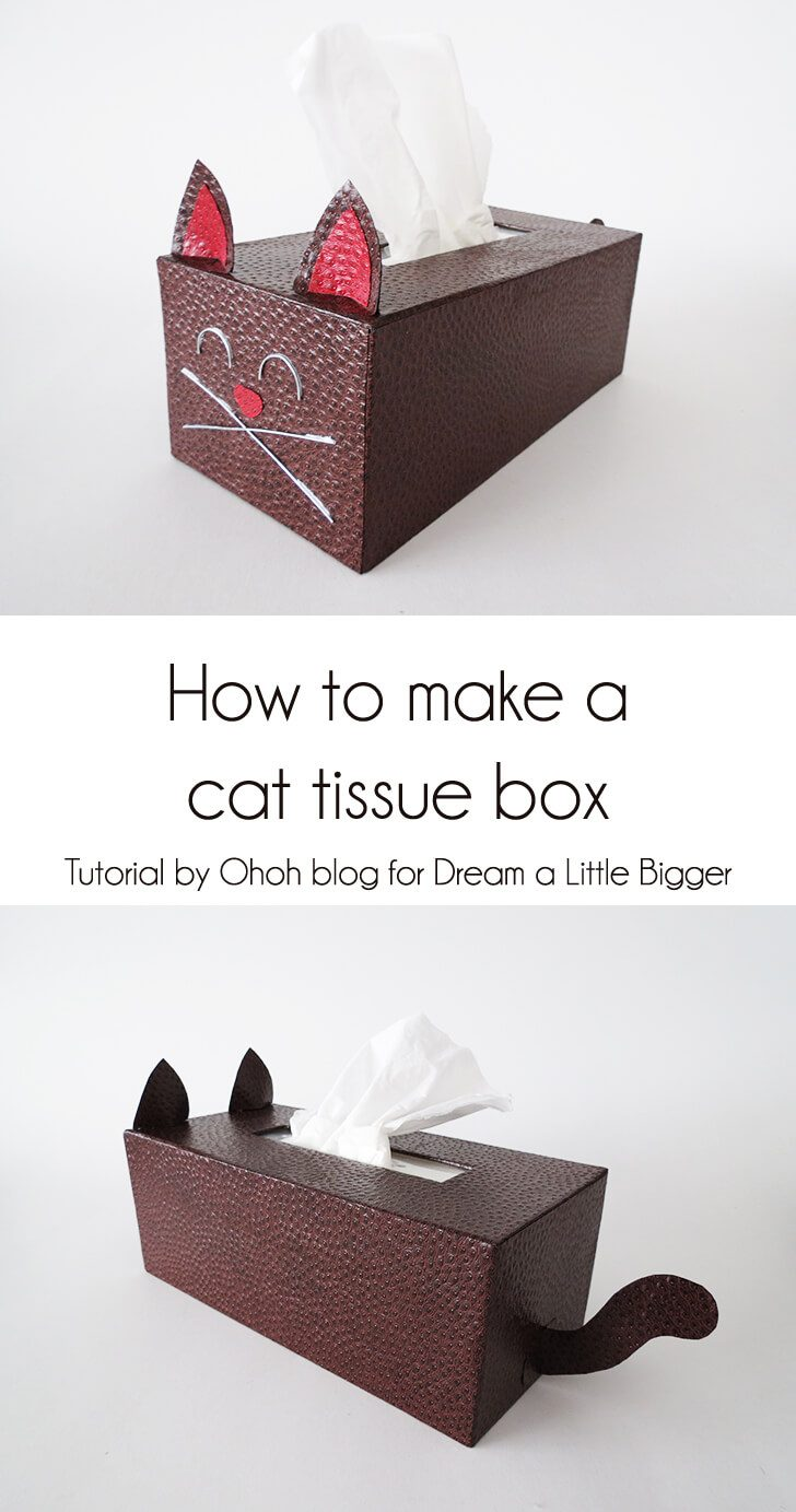 How to make a cat tissue box