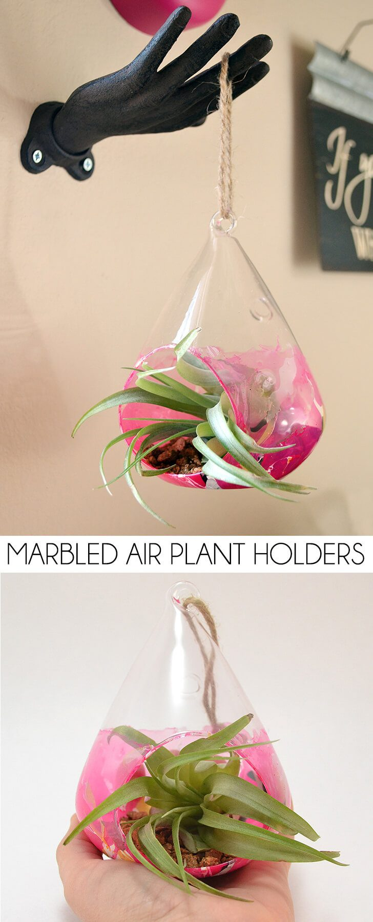 Marbled Air Plant  Holders
