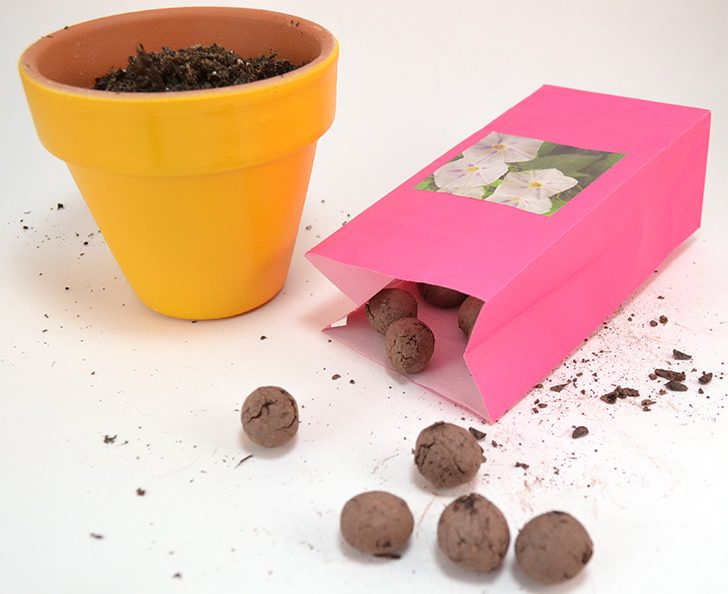 "Learn how to make seed balls perfect for new planting or ""guerrilla gardening""!"