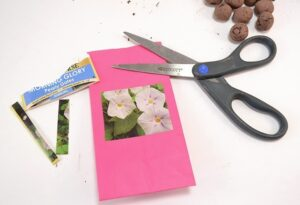 """Learn how to make seed balls perfect for new planting or """"guerrilla gardening""""!"""