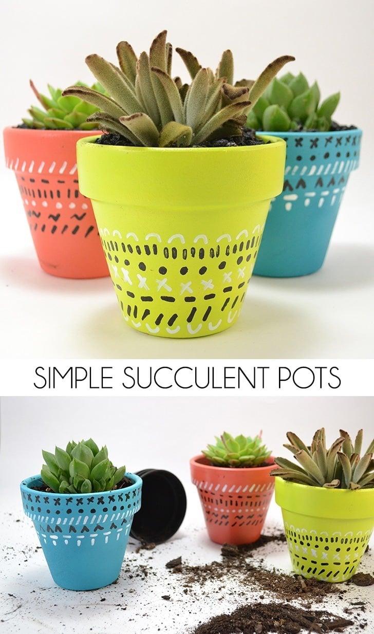 Simple Succulent Pots