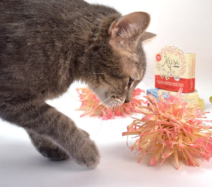 Make natural raffia cat toys. They're simple and kitties love handmade!