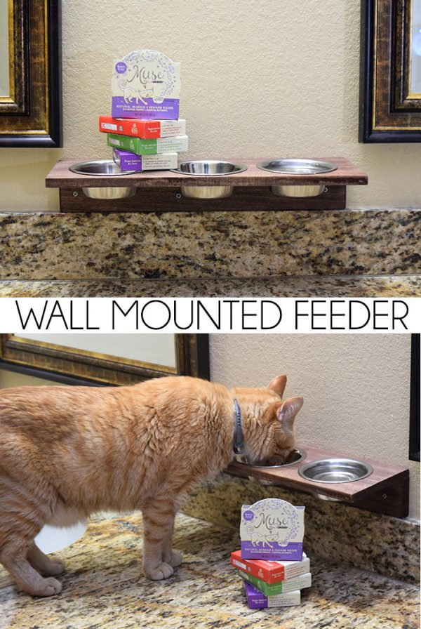 Save counter space by building a super simple wall mounted feeder for kitty!