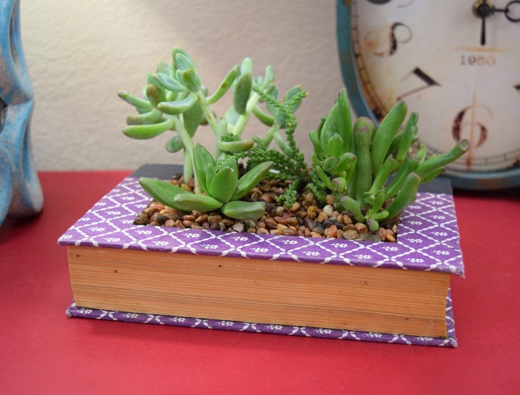 This is so neat! Turn your favorite read into a book succulent planter. I want to do this with Pride and Prejudice!