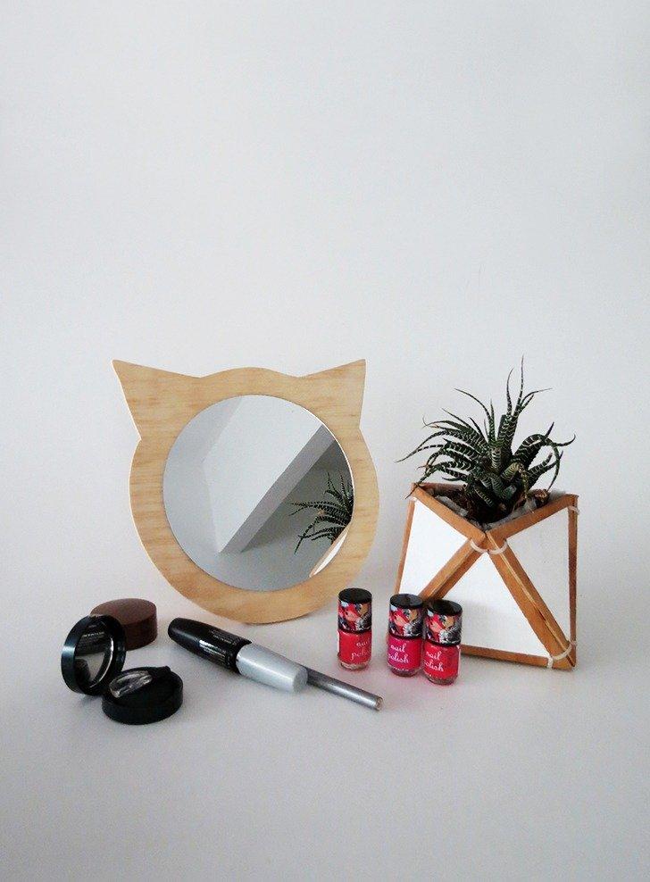 How to make a cat mirror