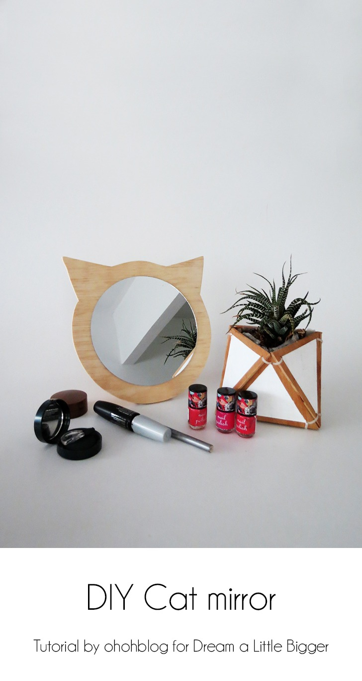 diy-plywood-cat-mirror-pin