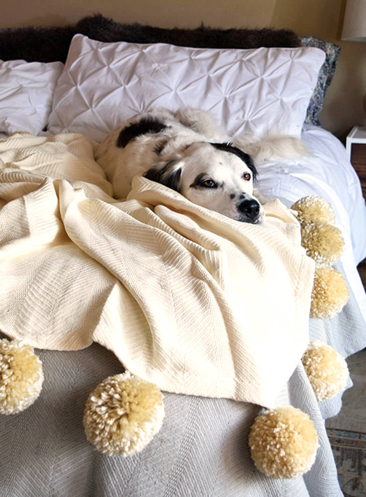 DIY Fuzzy Pom Pom Blanket