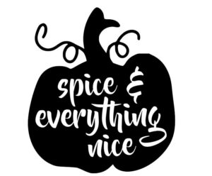 Pumpkin, spice and everything nice! That's me every fall! :)