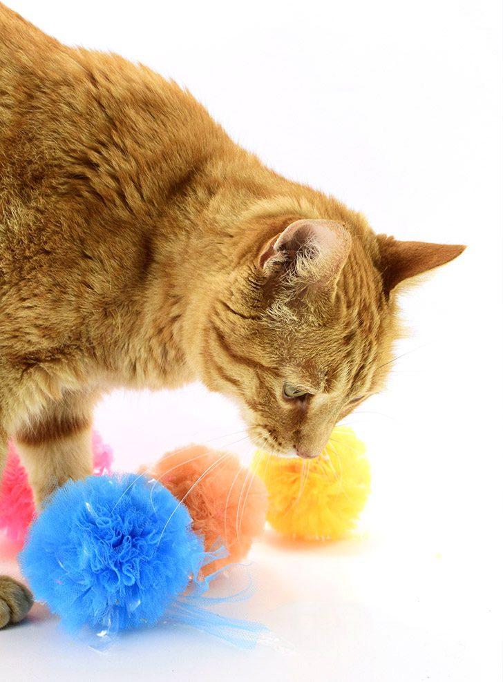 Crinkle Pompom Cat Toys