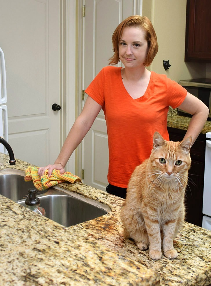 I haven't figured out how to train my cats to stay off of the kitchen counters just yet. Until then I'm happy to use natural cleaners from Green Works in my kitchen to keep things spick and span!