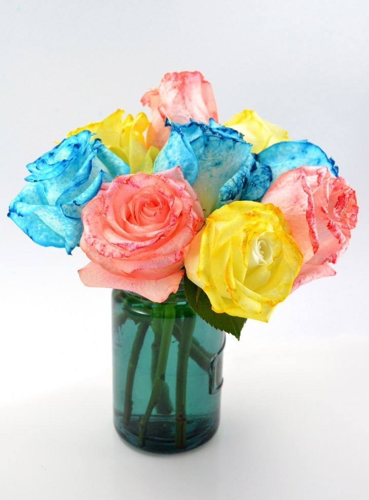 Attractive flowers in food coloring sketch coloring paper rainbow dyed roses dream a little bigger mightylinksfo