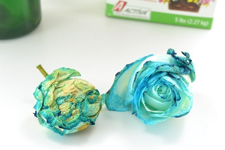 Turn a bouquet into a keepsake! Learn how to dry roses at home easily and quickly!